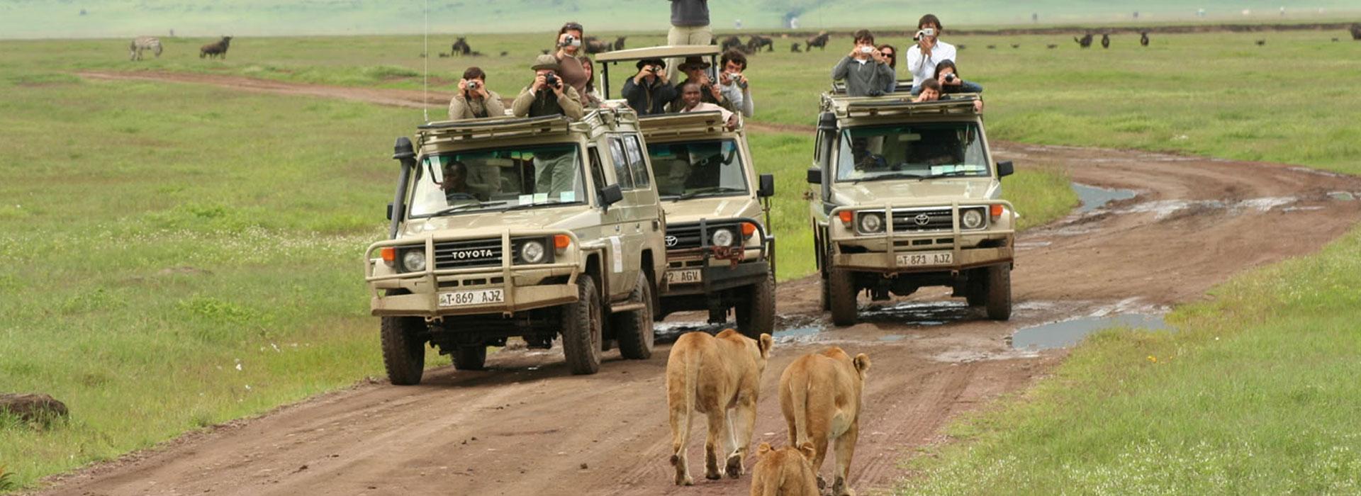 13 Days Experience Kenya and Tanzania Safari