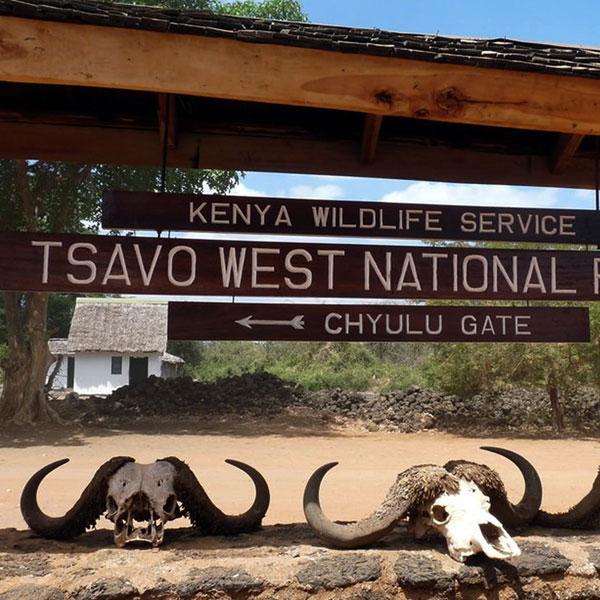 Malindi – Tsavo East (280 kms)