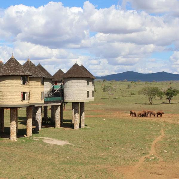 Tsavo East – Amboseli (315 kms)