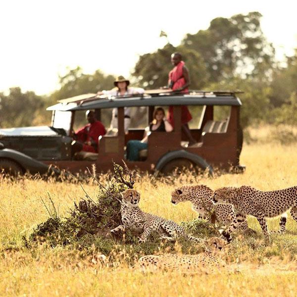 Masai Mara – Mombasa, Diani