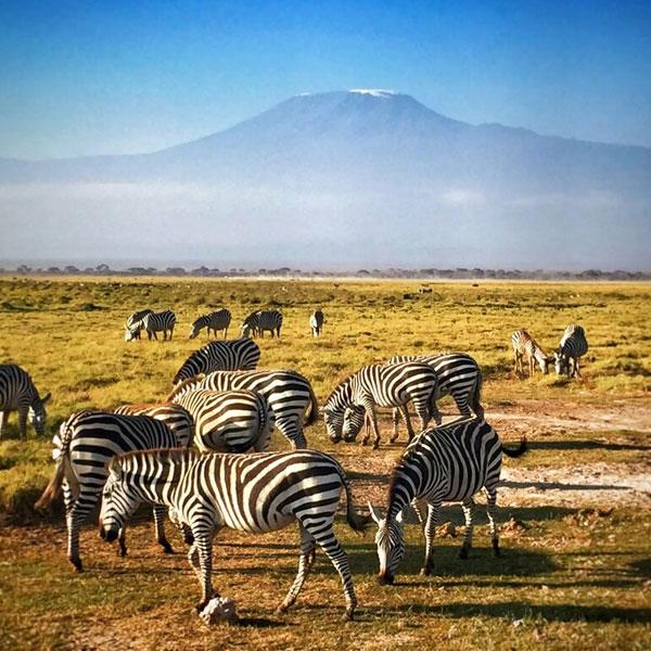 Tsavo West – Amboseli