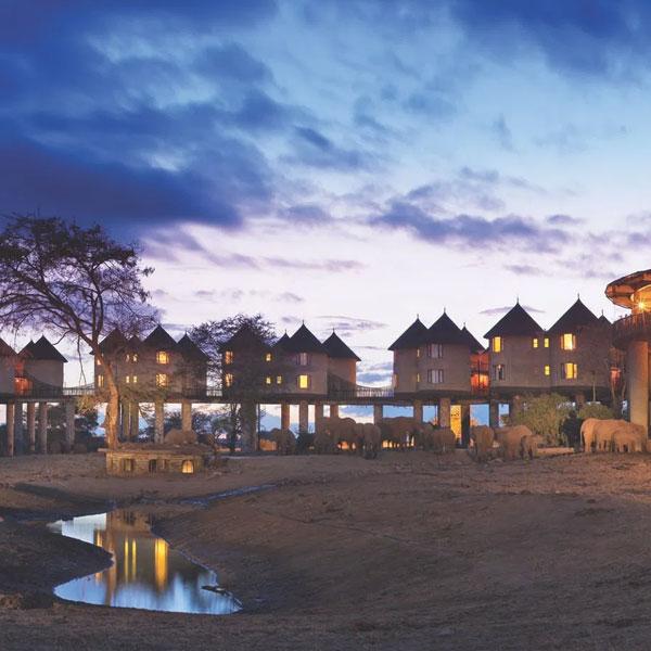 Mombasa – Saltlick (260 kms)