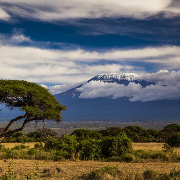 Voyager Ziwani Camp – Amboseli (155 kms)