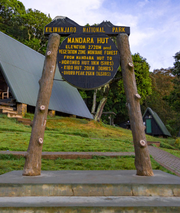Mandara hut (2700m) – Horombo hut (3720m)