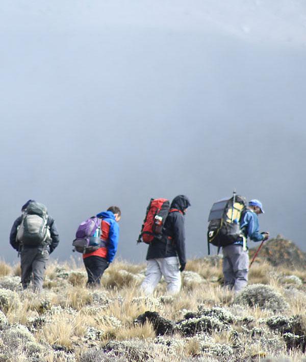 Horombo hut (3720m) – Acclimatisation day