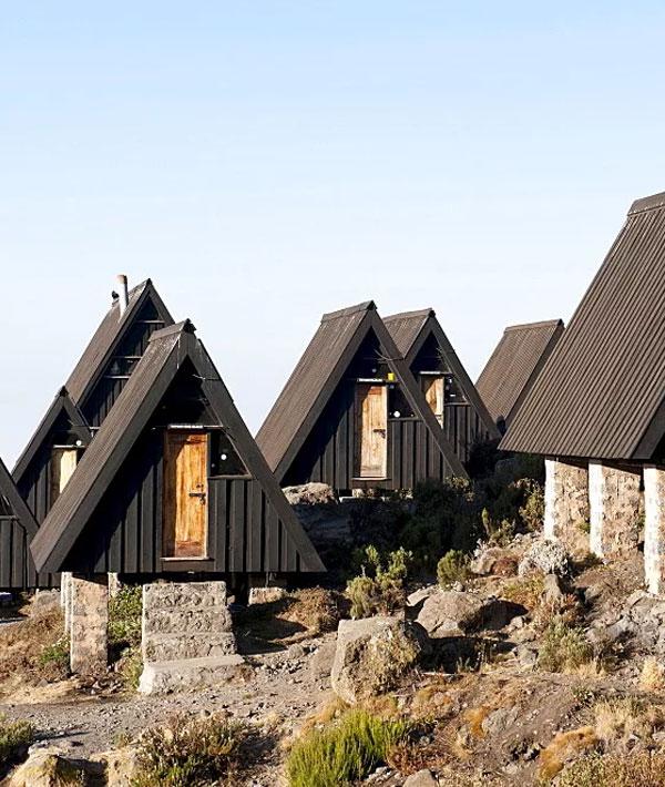 Moshi – Mandara hut (9,020ft/2750m)