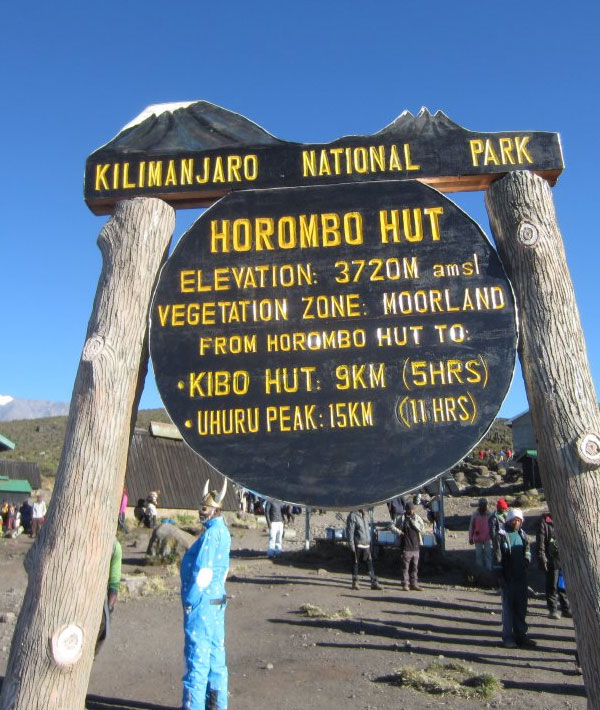 Mandara hut – Horombo hut (12,200ft/3720m)