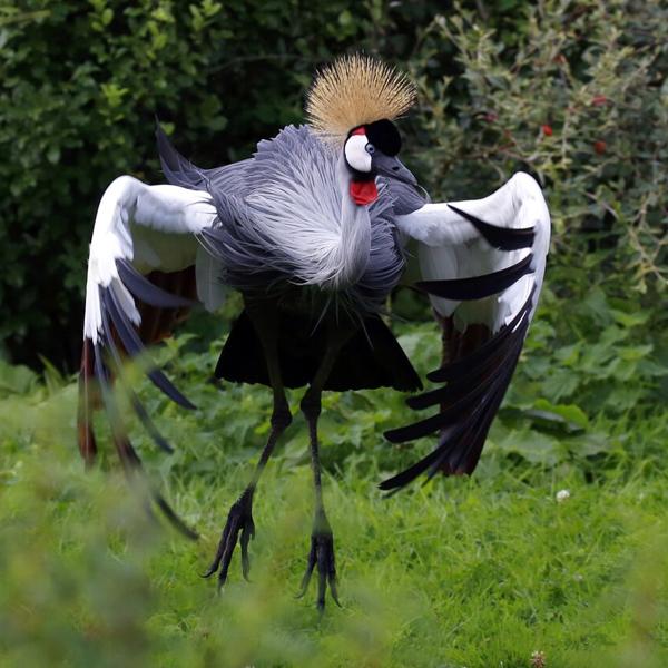 Kampala – Queen Elizabeth National Park