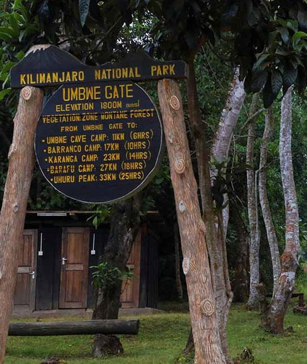 Umbwe Cave Camp to Barranco Camp