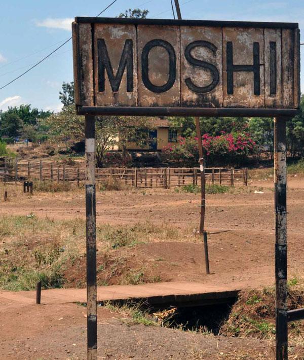 Moshi – Mti Mkubwa camp (9,020ft/2750m)