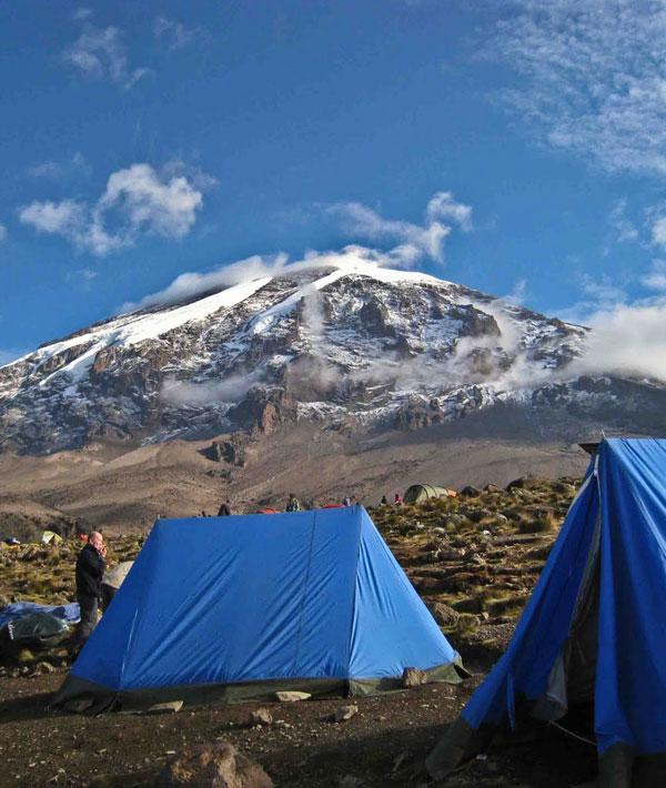 Mti Mkubwa – Shira (1) Plateau Camp (11,480ft/3500m)