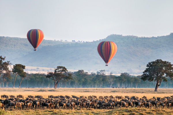 3 Days Wildebeest Migration Safari In Masai Mara From Nairobi By Air