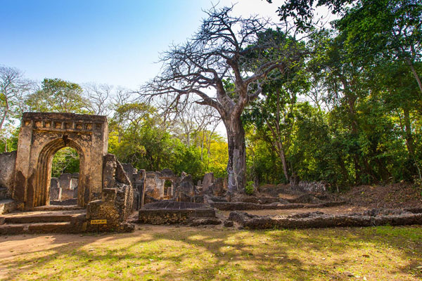 1 Day Malindi And Gedi Ruins Tour