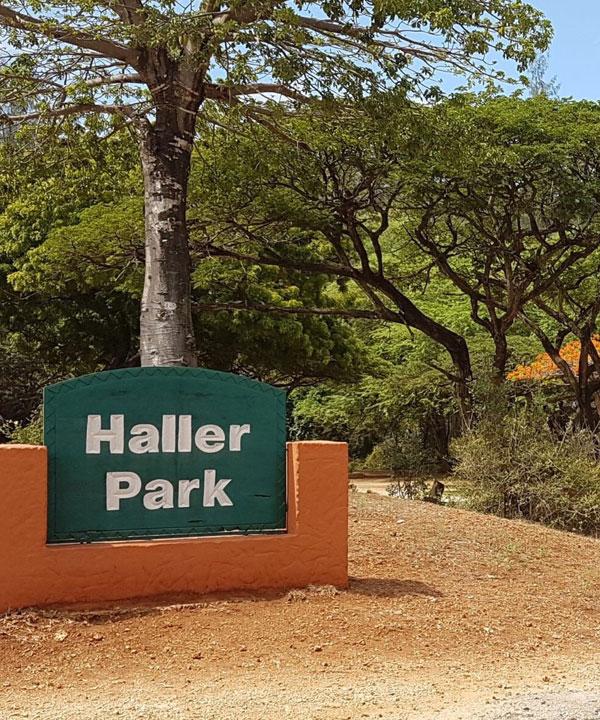 Excursion to Haller Park