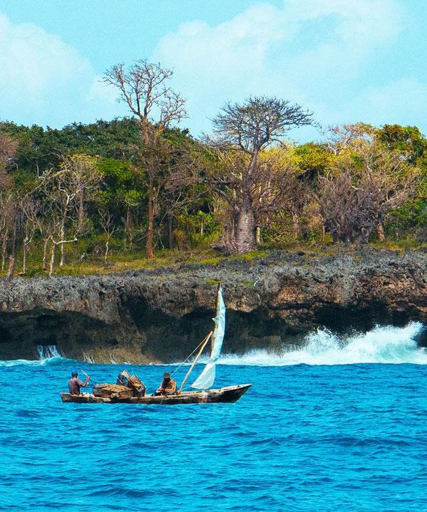 1 Day Wasini Island Tour