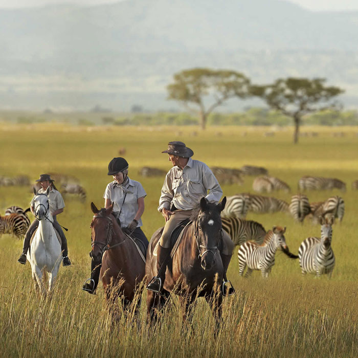 5 Days Adventure Kenya And Tanzania Safari