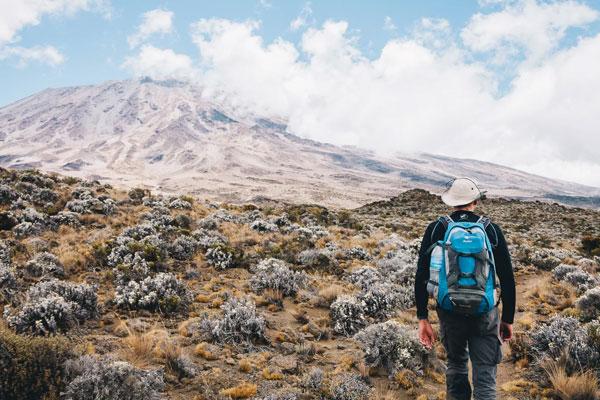 5 Days Kilimanjaro Safari