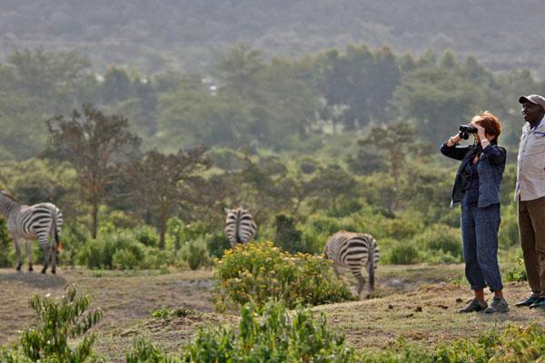 7 Days Kenya Safari to Samburu, Mountain Lodge, Lake Nakuru, Lake Naivasha and Masai Mara safari from Nairobi